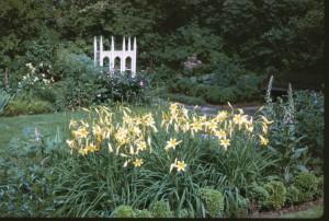 GCAhistory 0046 18thc 1963 daylilies
